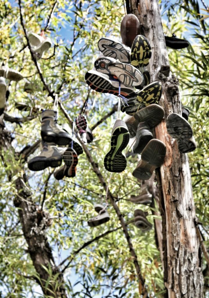 Park City's iconic shoe tree.
